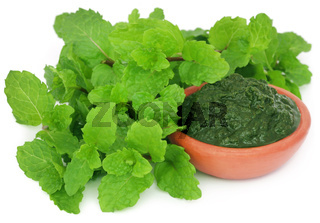 Bunch of mint leaves with ground paste