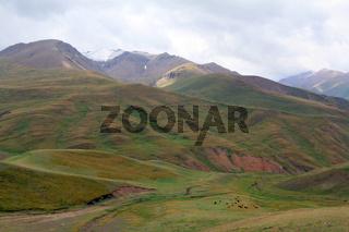 Karakeche-Pass (3364 m) vom Song-Kul-See nach Bashkaingdy, Kirgisistan
