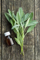 Bottle of essential sage oil.