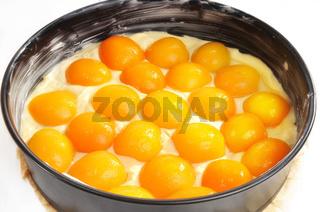 Rührteig mit Aprikosen in einer Kuchenform