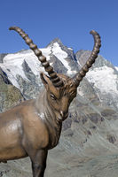 Ibex statue, Kaiser-Franz-Josef-Hoehe, Grossglockner, Hohe Tauern National Park, Carinthia, Austria,