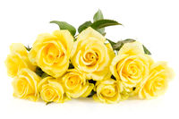 Yellow roses bouquet isolated on white