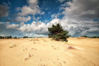 beautiful cloudy sky ove sand dunes