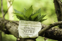Stinging Nettle in a jute bag with the word Stinging Nettle