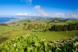 The landscape on Sao Miguel, Azores