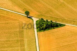 Weggabelung zwischen Feldern mit einem kleinen grünen Baumdreieck.