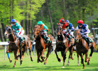 Female riders during horse race on 1st of May on the racetrack in Mannheim in Germany