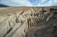 Erosionsrinnen in Chile's Halbwueste