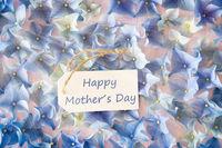 Sunny Hydrangea Flat Lay, Text Happy Mothers Day