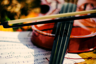 Close up violin and notes on ground with yellow autumn leaves.