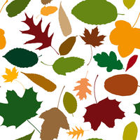 Seamless pattern mit Blättern im Herbst