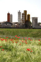 Poppy filed against  industrial plant