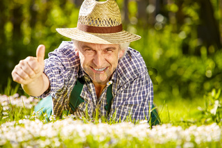 Gardener in flower meadow and thumb up