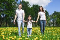 Family walking by flowers in park