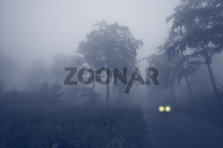 Harz im Nebel, Germany, Saxony-Anhalt, Sachsen-Anhalt