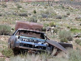 Ausgeschlachtetes Auto - Wasted Car