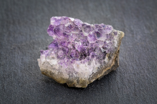 amethyst cluster on gray slate stone