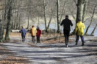 Gruppe beim Nordic Walking auf einem Waldweg