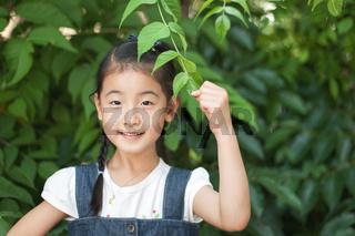 Asian  little girl is playing below the leaves birch. Korea Children