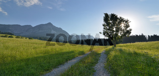 morgens am Wilden Kaiser in Tirol