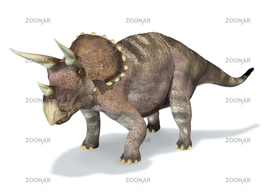 Photorealistic 3 D rendering of a Triceratops.