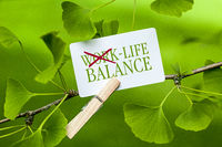 The Words Life Balance in a Ginkgo Tree