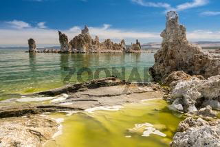 Tufa in the salty waters of Mono Lake in California
