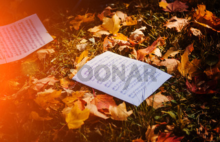 Notes on ground with yellow autumn leaves.