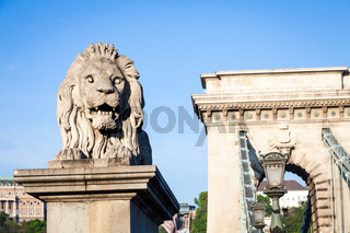 BUDAPEST, HUNGARY - 2017 MAY 19th: lion statue at the beginning of the Chain Bridge