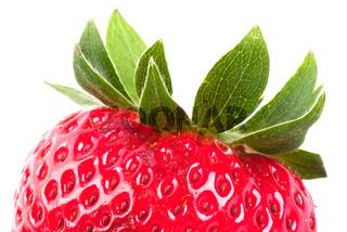 Erdbeere Ausschnitt V2