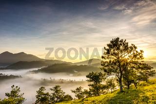 Beautiful sunrise on foggy mountain with sunlight through tree