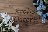 Crocus And Hyacinth, Frohe Ostern Means Happy Easter
