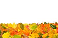 Hintergrund mit Herbstblätter