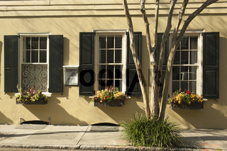 Windows with shutters and window boxes full of flowers in the spring in Charleston