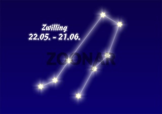 Twin, Zwilling