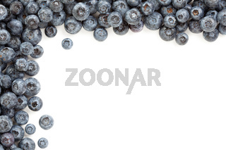 Fresh Blueberries Border Isolated on a White Background.