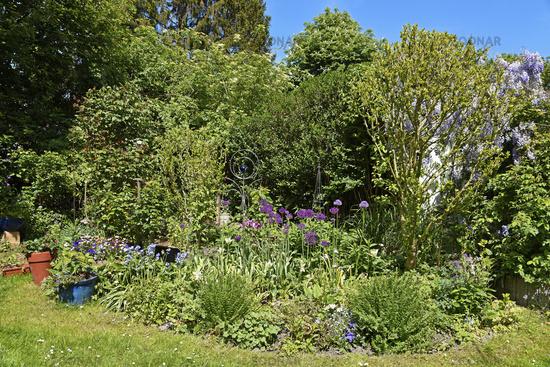 garden, Gelsenkirchen, North Rhine-Westphalia, Germany, Europe