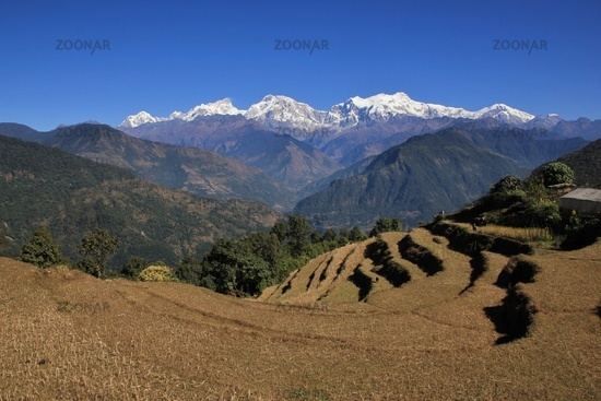 View from Baglungpani, Mt Manaslu
