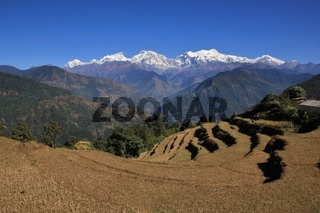 View from Baglungpani, Mt Manaslu