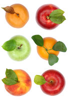 Früchte von oben Apfel Orange Sammlung Freisteller freigestellt isoliert
