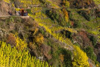 Rotweinwanderweg, Ahrtal, Rheinland-Pfalz