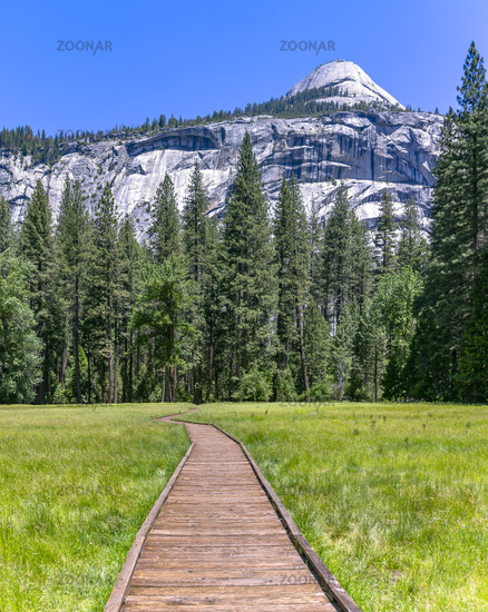 Wooden stepping path in the meadows of Yosemite