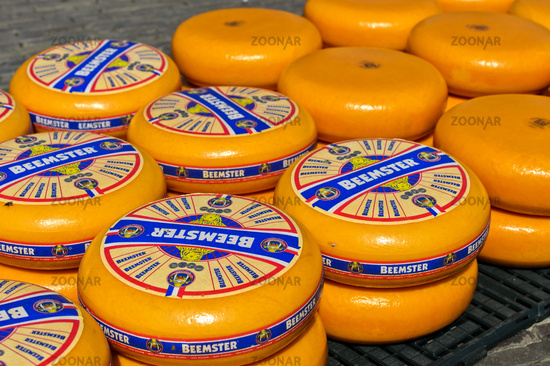 Rounds of Dutch Beemster cheese at the cheese market of Alkmaar, Netherlands