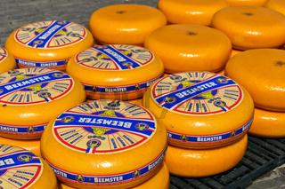 Holländische Beemster Käselaibe auf dem Käsemarkt von Alkmaar, Niederlande
