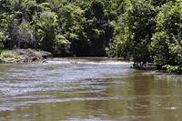 Fluß in Ecoparque de Una, Atlantischer Regenwald, Mata Atlântica, Bahia, Brasilien, Südamerika