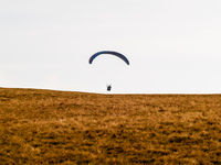 paragliding starts from a mountain meadow