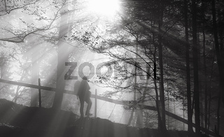 Man wandering into the forest