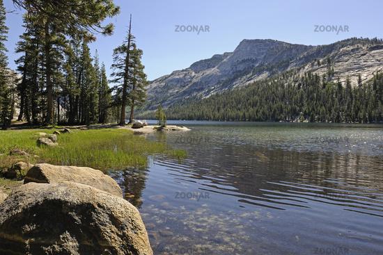 Morning mood at Tenaya Lake in Yosemite National Park, California