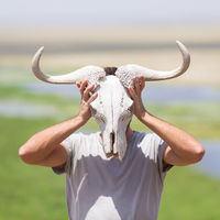 Man holding a white wildebeest skull wearing it like a mask in nature on african wildlife safari.