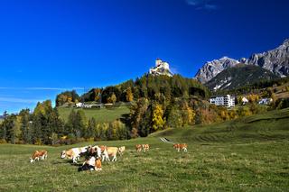 Landschaft im Herbst mit Schloss Tarasp, Graubünden, Schweiz